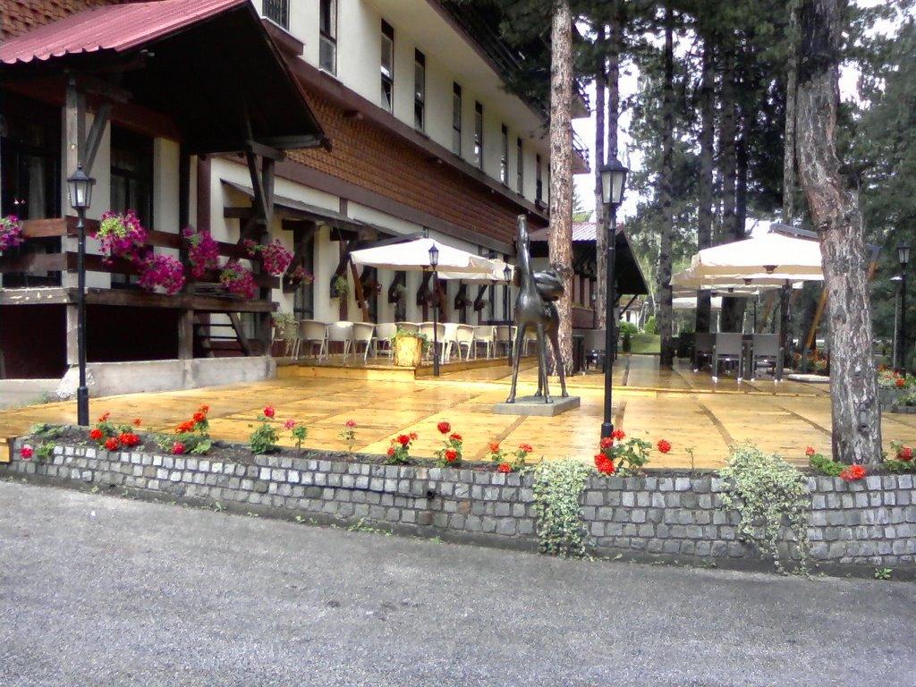 Hotel Palisad Zlatibor