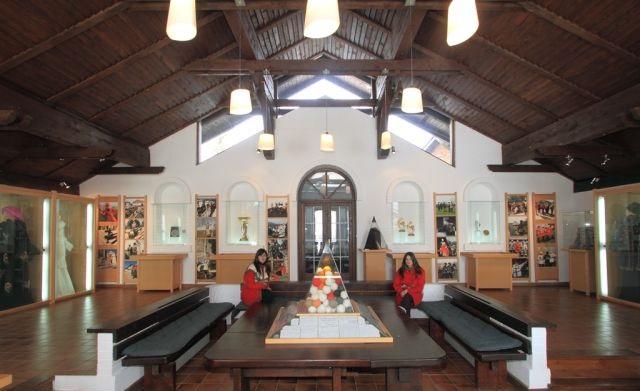 Muzej Pletilja