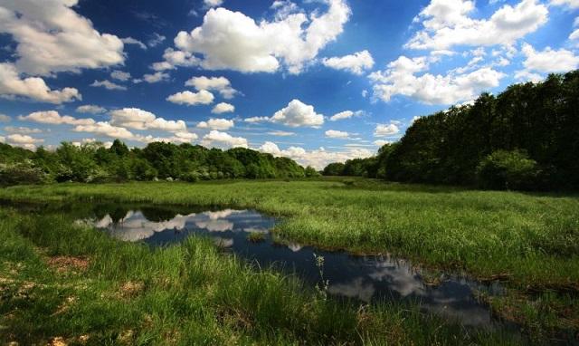 """""""Gornje Podunavlje"""" - Specijalni rezervat prirode"""