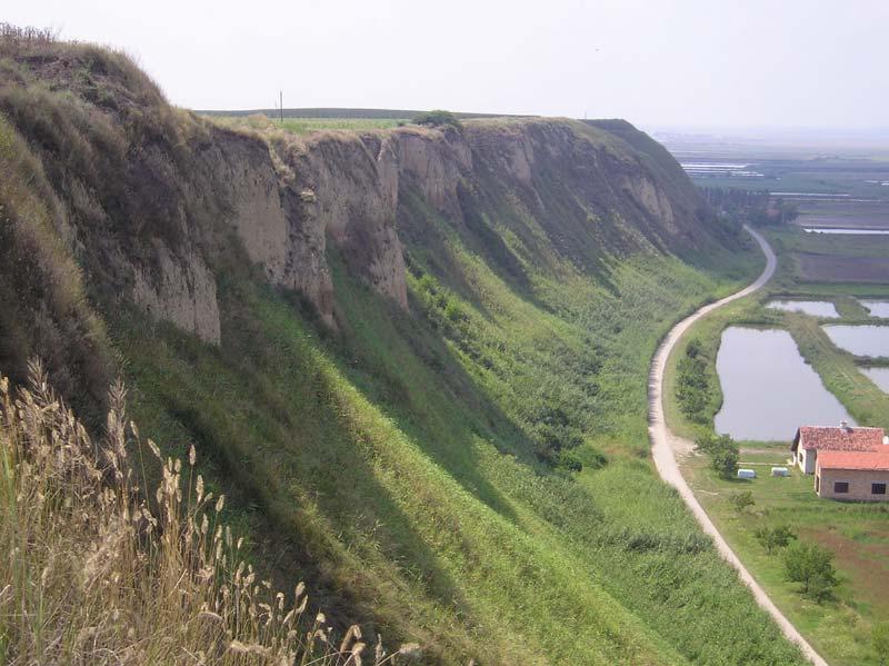TITELSKI BREG - Specijalni rezervat prirode